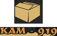 КАМ - 919